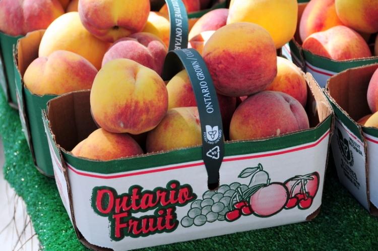 Ontario-peaches
