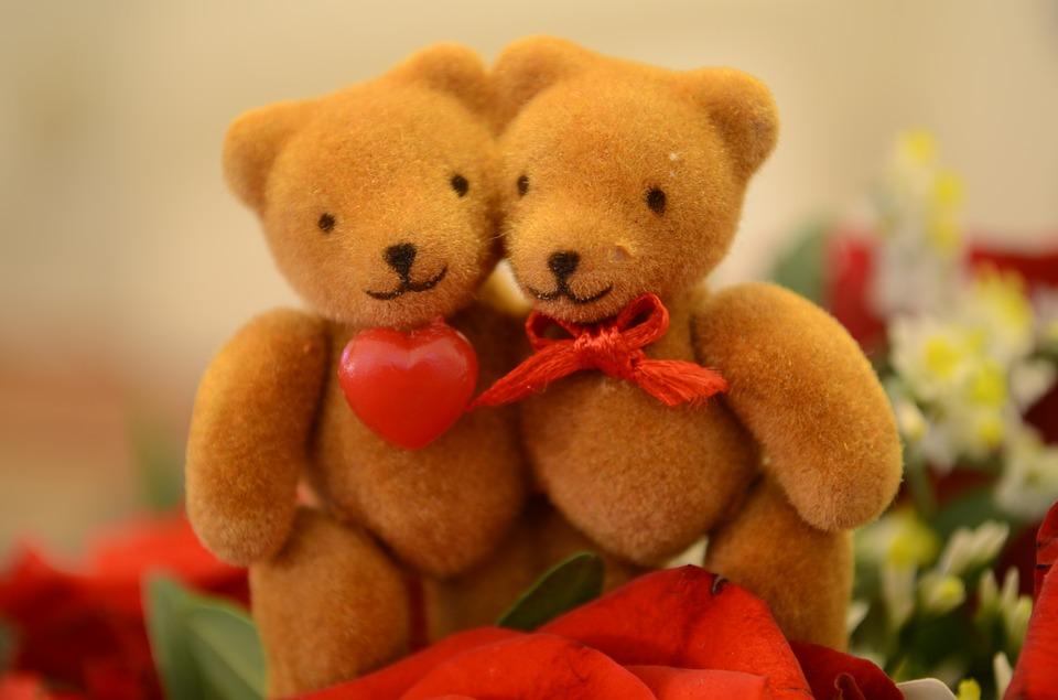 Bears Love Cute Heart Valentine's Day Bear Sweet