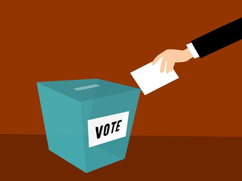 vote resized